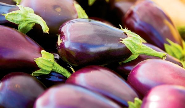 Shoppers can pick up fresh vegetables such as eggplant at the Downtown Waterfront Market at MarinerÕs Wharf Park in Elizabeth City, NC. The city started the market with just 14 tents and has already more than doubled that number to 30 tents in just its second year.