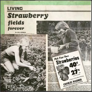 Warner Farm_StrawberryPress