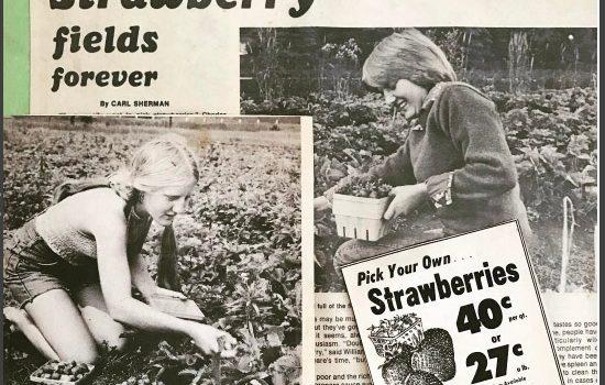 Warner Farm_StrawberryPress