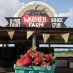 Warner Farm Stand